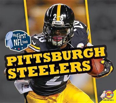Pittsburgh Steelers image