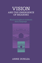 Vision and the Emergence of Meaning by Anne Dunlea image