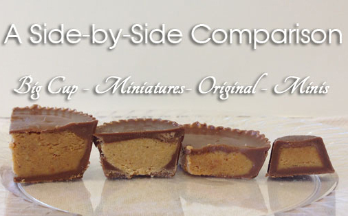 Reese's Sugar Free Peanut Butter Cups - Miniatures image