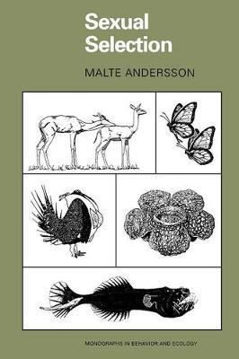 Sexual Selection by Malte Andersson