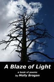 A Blaze of Light by Molly Brogan image