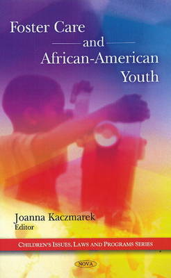 Foster Care & African-American Youth image