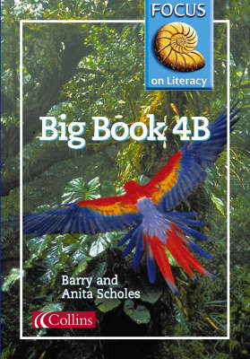 Focus on Literacy: 4B: Big Book by Barry Scholes image