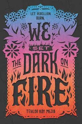 We Set the Dark on Fire by Tehlor Kay Mejia image