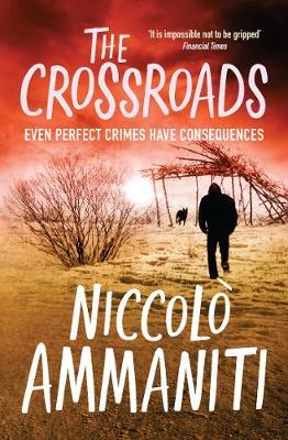 The Crossroads by Niccolo Ammaniti image