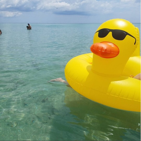 Rubber Ducky Giant Pool Float At Mighty Ape Australia