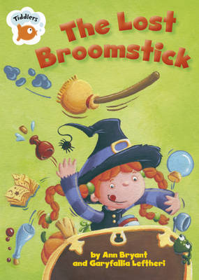 The Lost Broomstick by Ann Bryant image