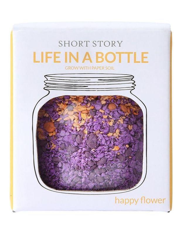 Short Story: Life in a Bottle - Purple