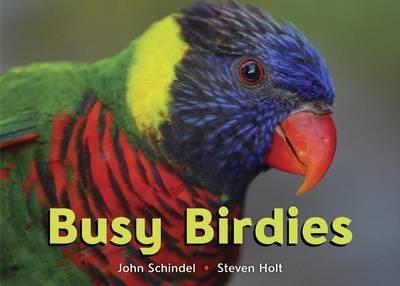 Busy Birdies by John Schindel image