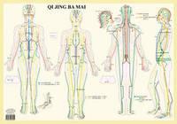 Qi Jing Ba Mai image