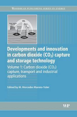 Developments and Innovation in Carbon Dioxide (CO2) Capture and Storage Technology image