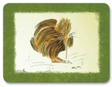 Quirky Kiwis Placemats (Set 6)