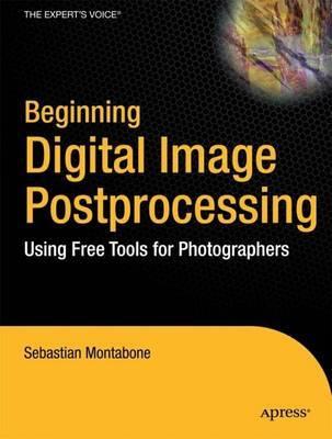 Beginning Digital Image Processing by Sebastian Montabone