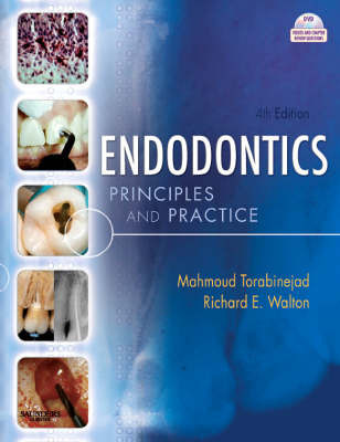 Endodontics: Principles and Practice by Mahmoud Torabinejad image