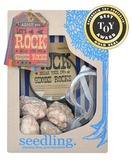 Seedling: Let's Rock! - Geode Kit