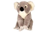 Cuddlekins: Koala - 12 Inch Plush