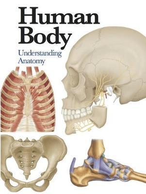 Human Body by Jane De Burgh