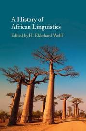 A History of African Linguistics