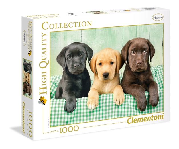 Clementoni: Three Labs - Puppies - 1000pc Puzzle