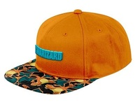Pokemon: Charizard Sublimated - Flat Peak Cap