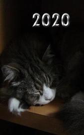 2020 Cat Journal by Carol Ann Cartaxo