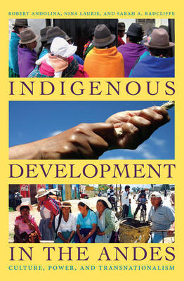Indigenous Development in the Andes by Robert Andolina image
