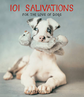 101 Salivations by Rachael Hale