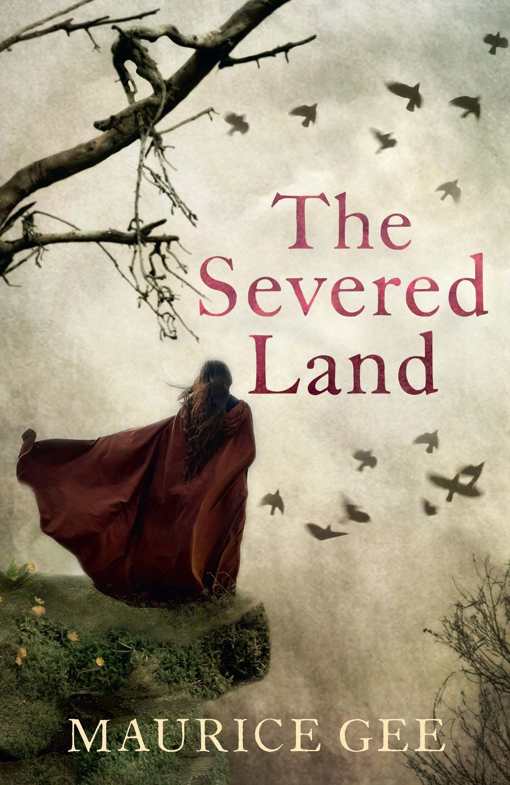 The Severed Land by MAURICE GEE image
