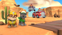 PAW Patrol: On a Roll! + Travel Case for Switch