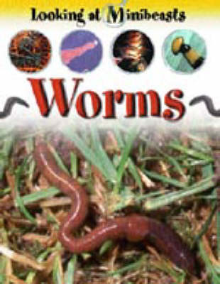 Worms by Sally Morgan image