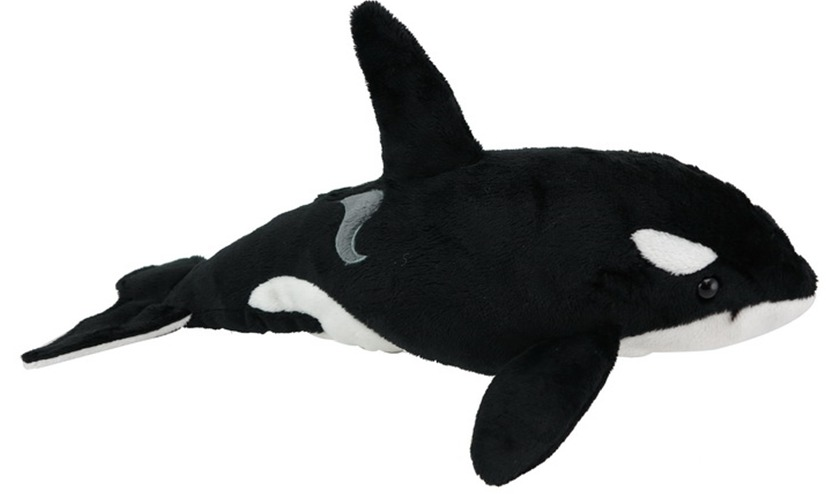 Orca with sound image