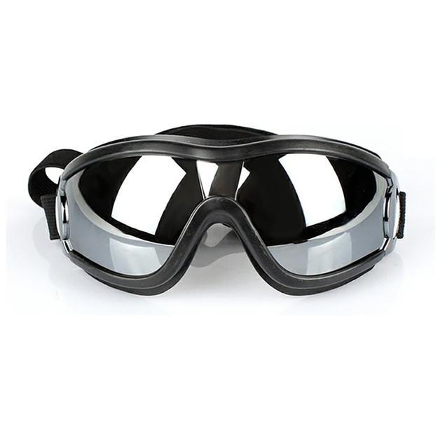 Ape Basics: UV Protective Sunglasses for Dogs