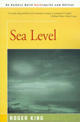 Sea Level by Roger King image