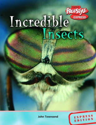 Incredible Insects by John Townsend image