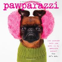 Graphique De France: Pawparazzi 2019 Square Wall Calendar
