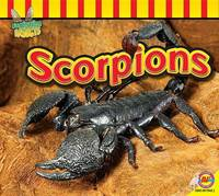Scorpions by Samantha Nugent