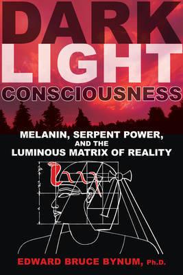 Dark Light Consciousness image