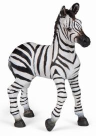 Papo - Zebra Calf