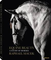 Equine Beauty by Raphael Macek