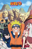 Naruto Poster - Hokage (521)