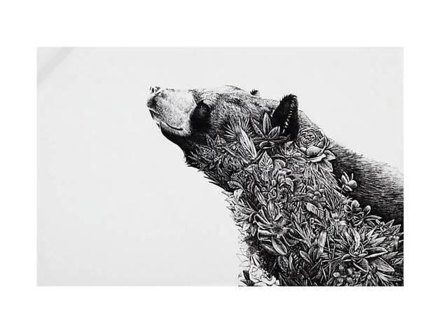 Maxwell & Williams Marini Ferlazzo Tea Towel - Asiatic Black Bear