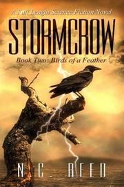 Stormcrow by N C Reed