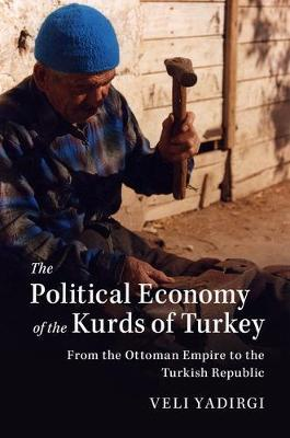 The Political Economy of the Kurds of Turkey by Veli Yadirgi