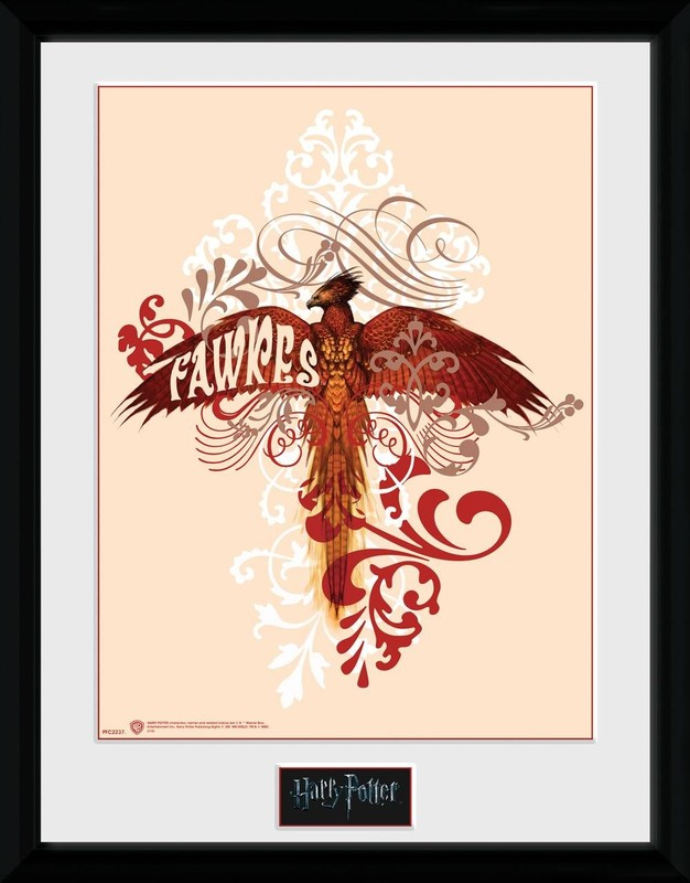 Harry Potter: Fawkes - Collector Print (41x30.5cm)