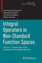 Integral Operators in Non-Standard Function Spaces by Vakhtang Kokilashvili image