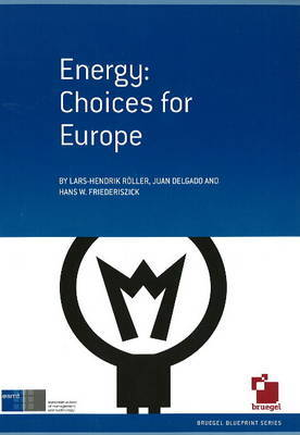 Energy: Choices for Europe by Lars Hendrik Roller image
