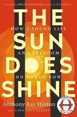 The Sun Does Shine by Lara Love Hardin image