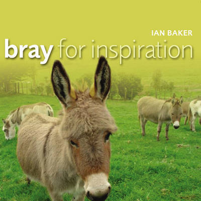 Bray for Inspiration by Ian Baker image