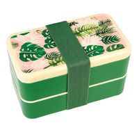 Bento Box - Tropical Palm