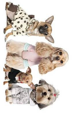Chihuahua, Shih Tzu, and Cocker Spaniel Dressed Up by Unique Journal image